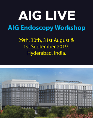 AIG Endoscopy Workshop 2019