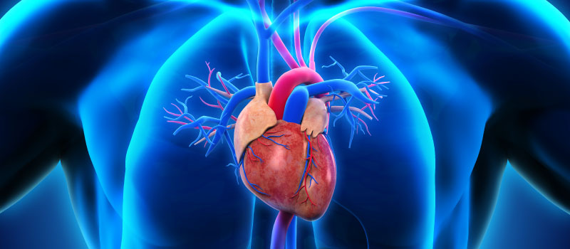 Managing cardiovascular risk in young adults