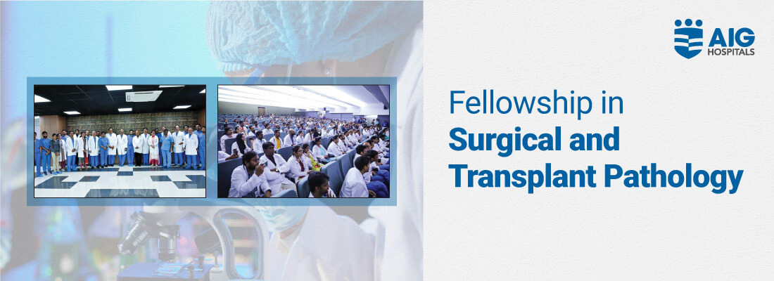 Fellowship in Surgical and Transplant Pathology